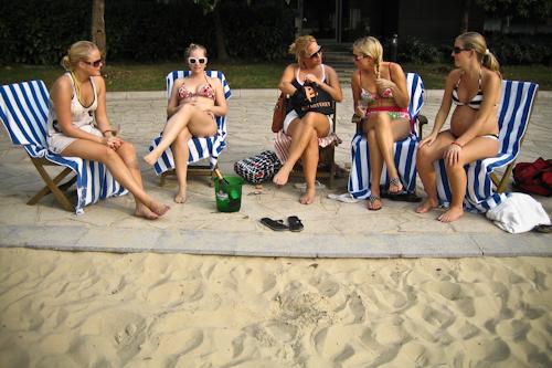 2009-09-06 panel chicks