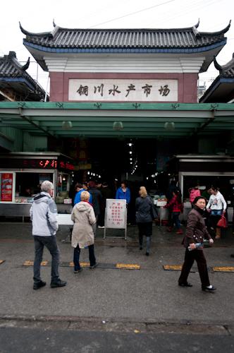 2011-04-03 tong chuan fish market shanghai-1