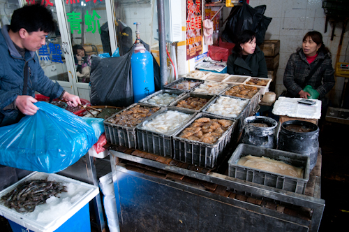 2011-04-03 tong chuan fish market shanghai-6